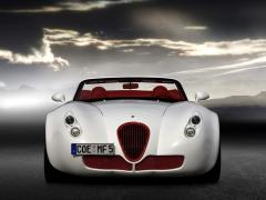 威兹曼Roadster图片
