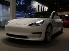 Model 3(进口)图片